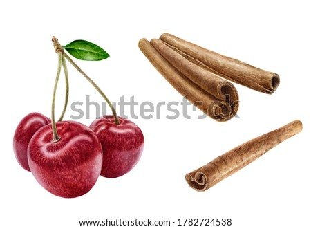 Cinnamon sticks sweet cherry set watercolor illustration isolated on white background