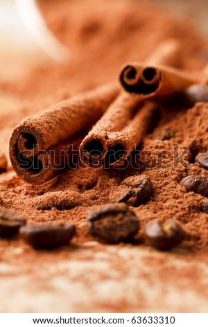 Cinnamon Sticks with Cocoa