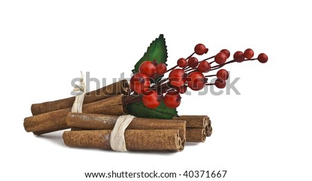 Cinnamon sticks with mistletoe