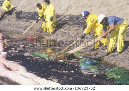 CIRCA 1990 - A team of environmentalists clean up an oil spill in Huntington beach, California