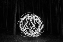 circle of light in the woods