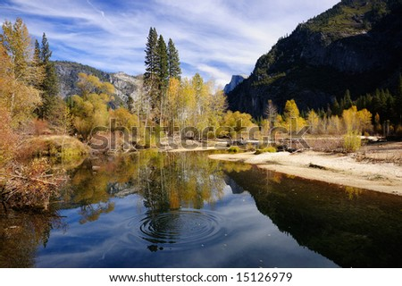 Circles are spreading on a smooth surface of Merced river with beautiful autumn colors contrasting with gray granite walls of Yosemite valley.