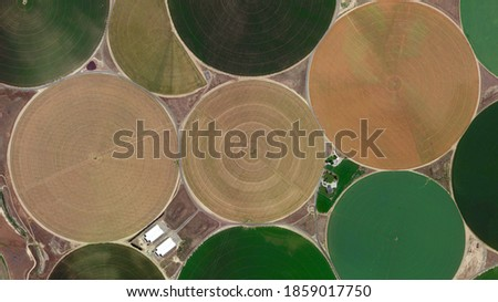 Circular colorful fields bird's eye view, Center pivot irrigation system and food safety, looking down aerial view from above Stock fotó ©