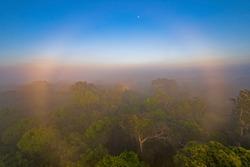 Circular Rainbow in the Amazon Rain Forest Morning Mist near Alta Floresta, Brazil