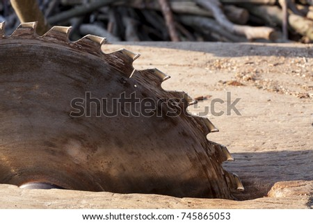 Circular saw. Circular Saw on wooden background with daylight #745865053