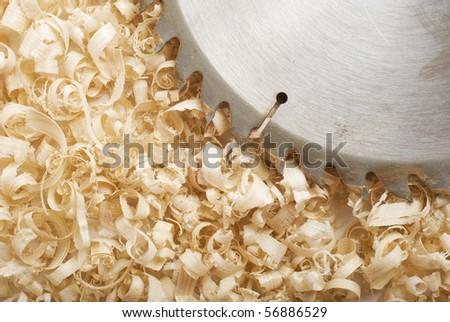 Circular saws and sawdust