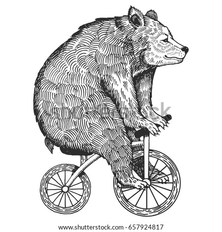 circus bear on bicycle raster...