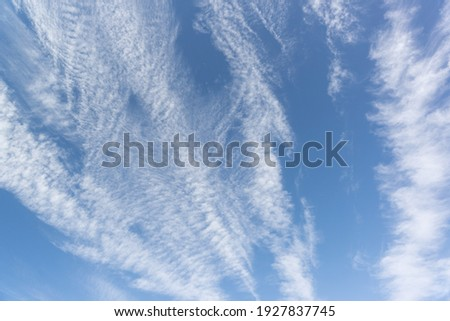 Cirrus clouds are individual thin, light white clouds with a fibrous and filamentous structure, without shadows. Class of high clouds not lower than 6000 m and to the upper tier Photo stock ©