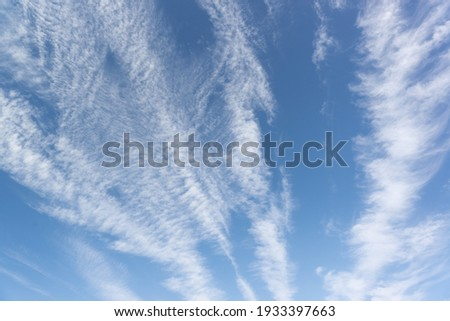 Cirrus clouds - separate thin, light clouds with a fibrous and filamentous structure, without shadows, white color. They belong to the class of high clouds not lower than 6000 m and to the upper tier Photo stock ©