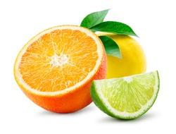 Citrus composition. Fruit with leaves isolated on white background. Orange, lemon, lime.