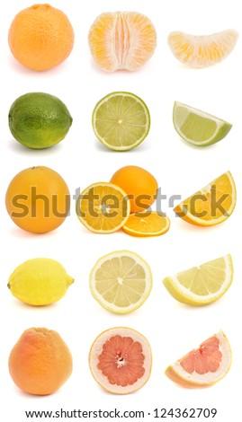 Citrus fruit compilation - isolated on white