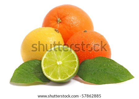Citrus fruits.   Citrus fruits. Citrus fruits on white background.  Citrus fruits. Citrus fruits on white. Citrus fruits.  Citrus fruits  with leaves. Citrus fruits. Citrus fruits.  Citrus fruits.