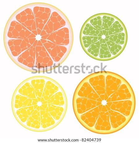 Citrus fruits orange, lemon, grapefruit, lime