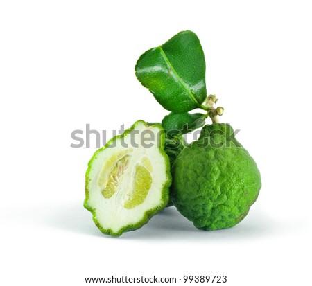 Citrus hystrix on white background - stock photo
