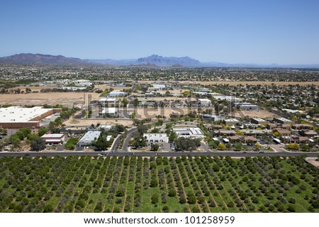 Citrus meets the Suburbs, orange groves next to office buildings and residential neighborhood