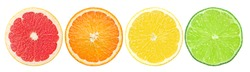 citrus slice, grapefruit, orange, lemon, lime, isolated on white background, clipping path