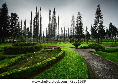City garden with green grass brick paths and tall thin trees