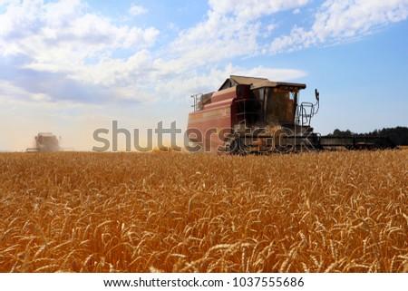 City of Zavodoukovsk, Tyumen Region, Russia, August 20, 2016: Harvester for harvesting bread. Harvest in Siberia for Russia. #1037555686
