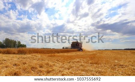 City of Zavodoukovsk, Tyumen Region, Russia, August 20, 2016: Harvester for harvesting bread. Harvest in Siberia for Russia. #1037555692