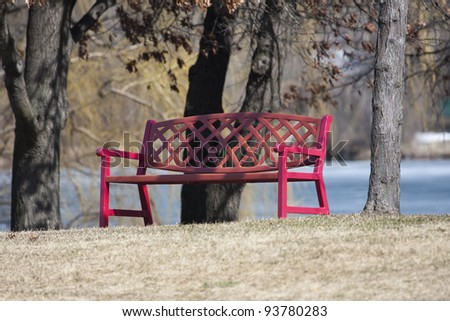City Park Bench near trees in the park.