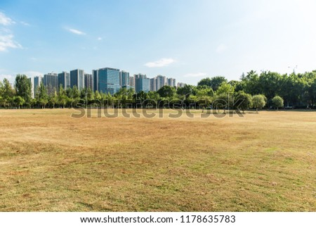 City park on a clear summer day, vast meadows and lush forests and tall buildings and blue sky and white clouds in the distance