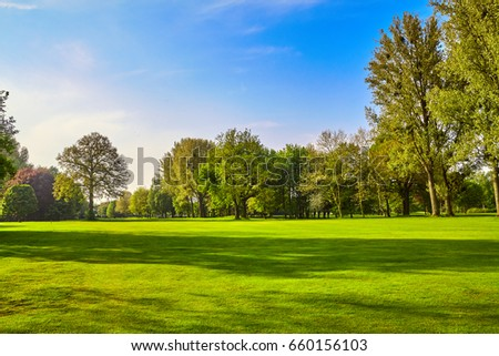 City park. Panorama of a beautiful  park
