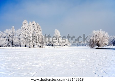 City park trees and lake under snow and ice - stock photo