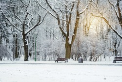 City park without people in winter. Quarantine concept. Snow-covered trees, bushes and benches in the city park. Poland, Bialystok, city park in winter.