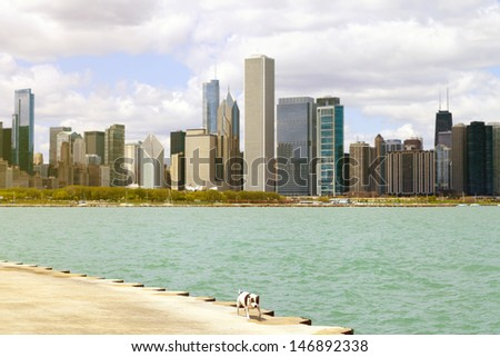 City Sidewalk With Dog And Skyline in Background