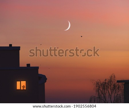 City silhouette under moon. Trees, birds and houses with one lonely light in window with flowerpot. Young crescent moon in the dramatic sunset sky. Soft evening in town. Home feel. Twilight Minimalism 商業照片 ©