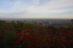 city view from mount royal lookout at parc du mont royal in montreal of quebec, canada in the morning