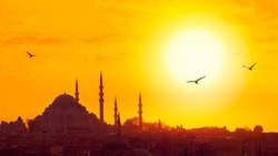 Cityscape of Istanbul with ancient muslim architecture, minarets and turkish landmarks in an old town. Suleymaniye Mosque at golden sunset with silhouettes of arabic city and birds over the skyline.