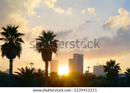 Cityscape with vivid fiery dawn. Amazing warm dramatic cloudy sky above dark silhouettes of city buildings. Orange sunlight. Atmospheric background of sunrise in overcast weather. Copy space #1239452215