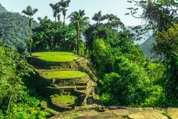 Ciudad Perdida (The Lost City) - Deep in Colombian Jungle