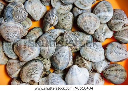 clams in a orange plate