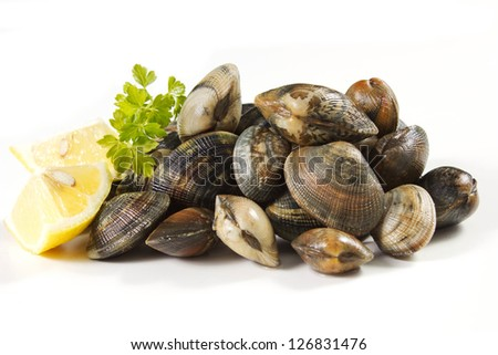 clams on a white background with lemon