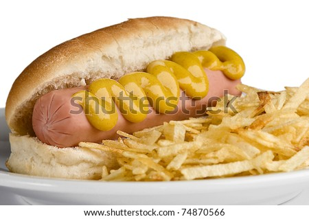 Classic American hot dog with mustard and fries