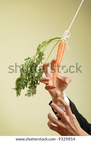 Classic business metaphor of carrot on a stick