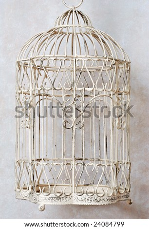Classic decorative bird cage with faux marble background.