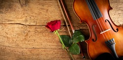 classic retro violin music string instrumt with red rose flower on old oak wood wooden wide panorama background. classical musical romantic valentines day concept.