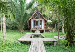 Classic Style Wooden House in The Cottage with The Wooden Path in front of The House surrounded by Nature View Various type of Trees for Family Outing Activity in The Jungle