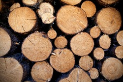Classic wood pile medium and small circular logs