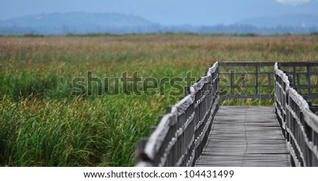 Classic Wood walk way in grass field with sunset theme