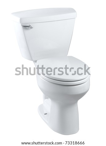Classical  design of the sanitary toilet bowl isolated on white