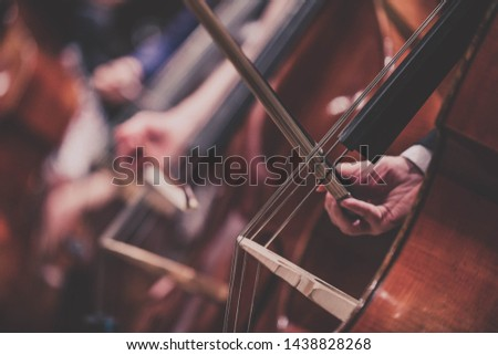 Classical music concert - double basses