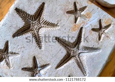 Clay imprints of starfish #1121788172