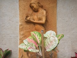 Clay sculpture on the wall. Semi-human clay sculpture, half female and half fish, see in wall temple and door house in asean. This is a Beautiful semi-woman holding a conch shell.