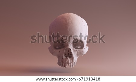 Clay Skull Front skull scan SCSU VizLab thingiverse scsuvizlab CC Attribution