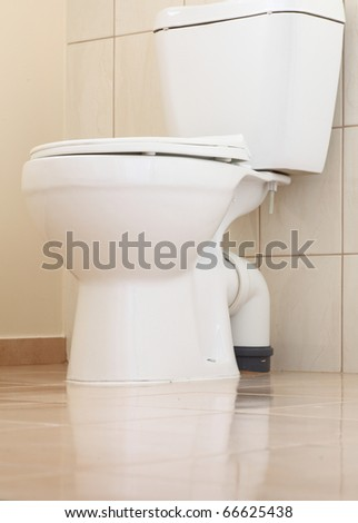 Clean and white toilet in a bathroom