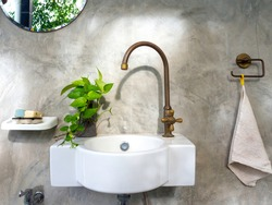 Clean loft style bathroom interior with white modern sink basin and brass faucet, green leaves in pot and round mirror on concrete wall background.